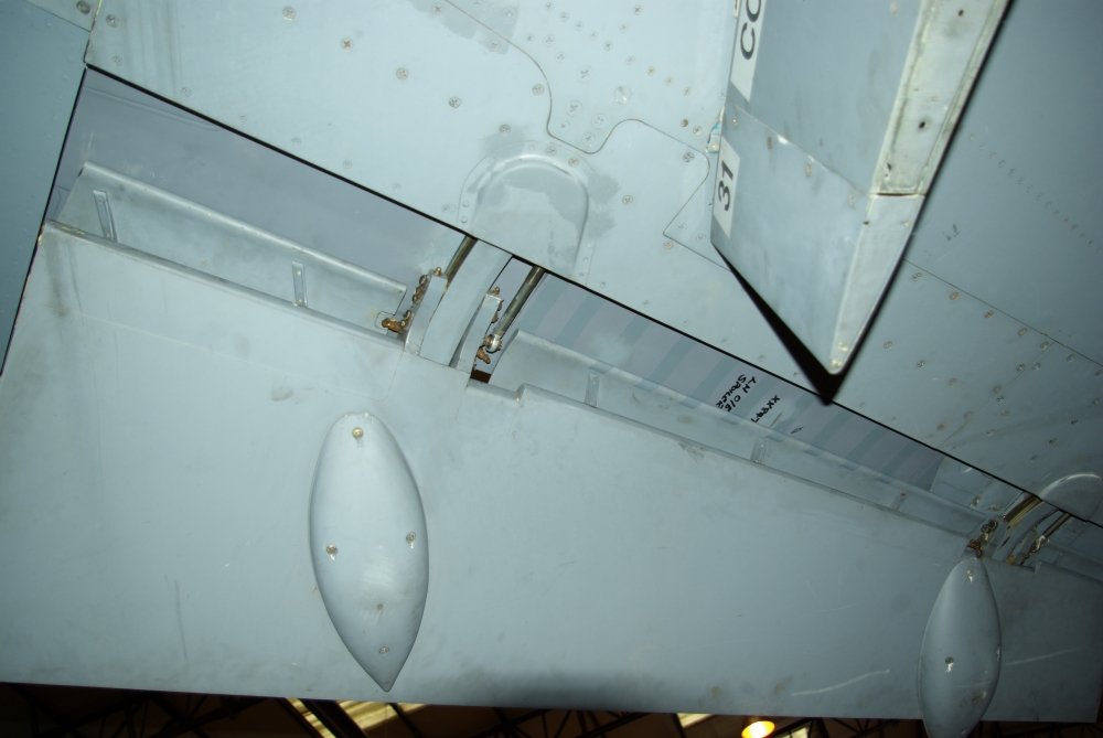 flaps8.jpg