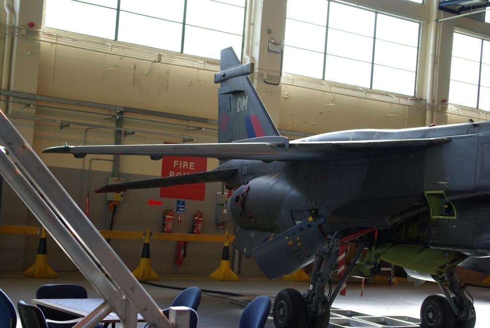 wing16.jpg