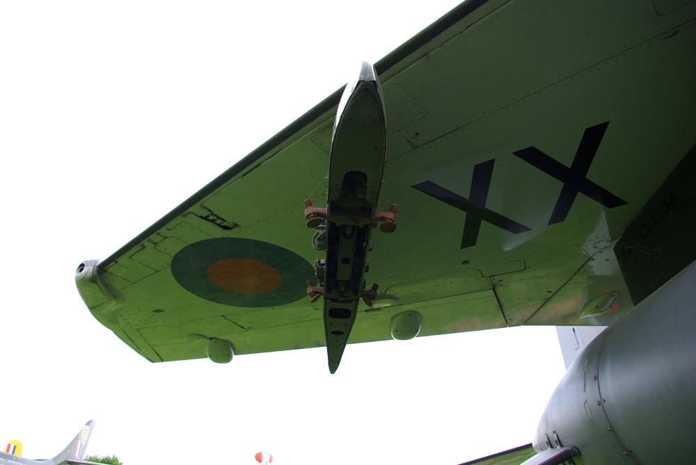 wing22.jpg