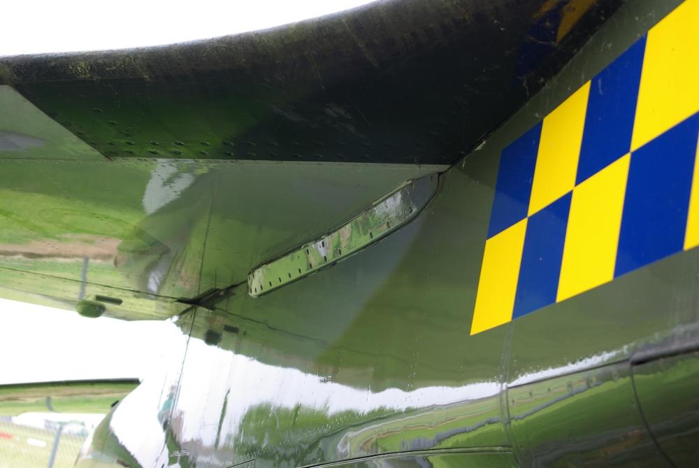 wing24.jpg