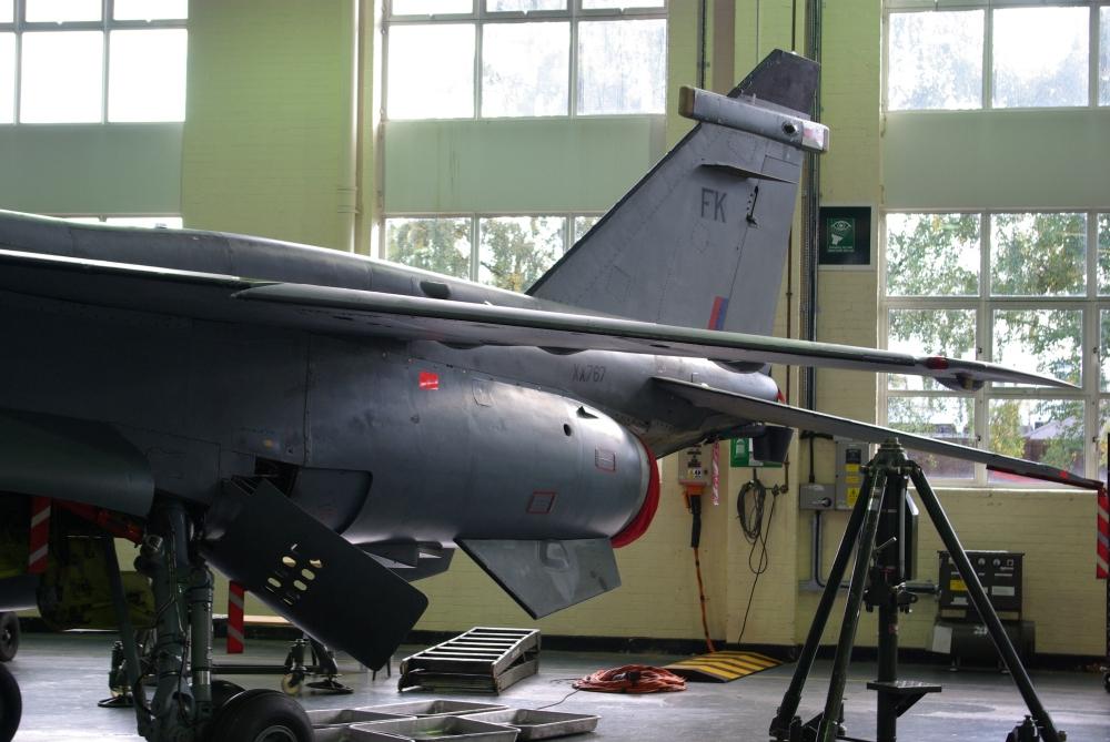 wing7.jpg