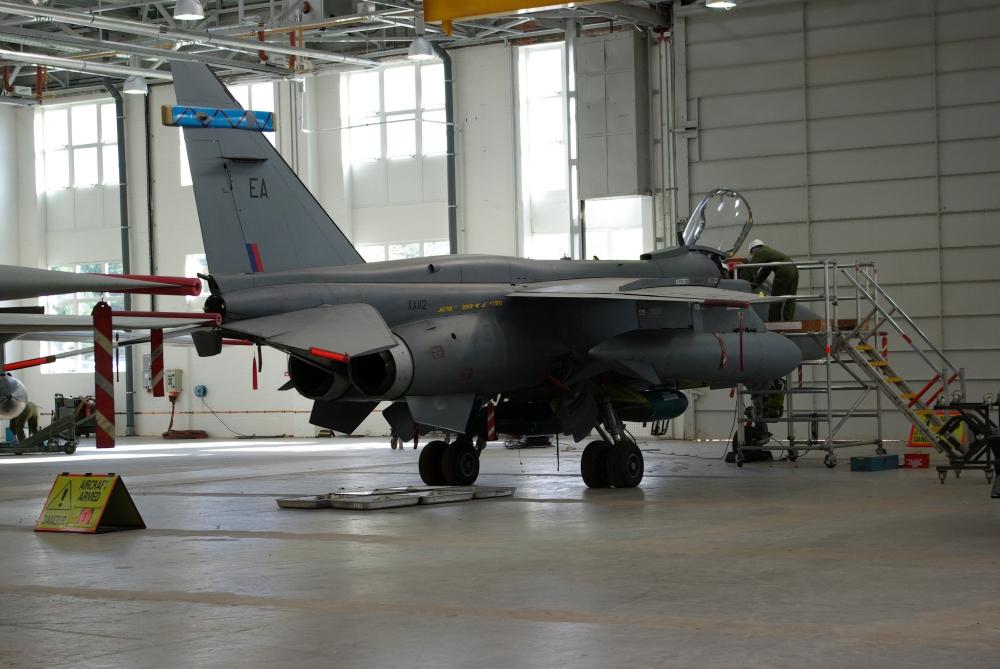 wing9.jpg