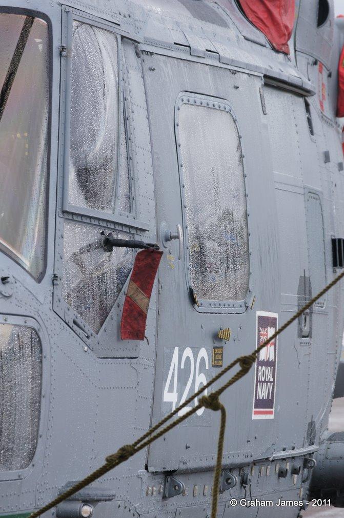 Lynx-0032.JPG