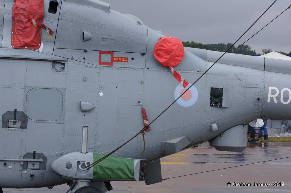 Lynx-0036.JPG